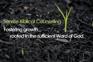 Sonrise Biblical Counseling