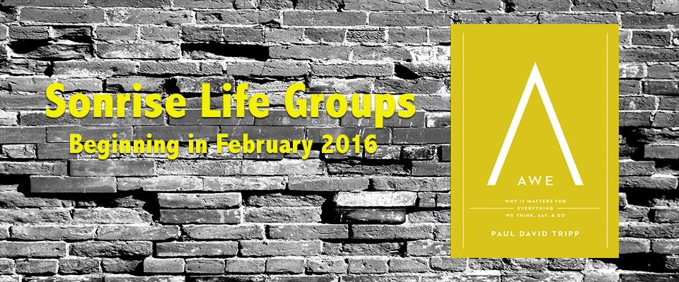 2016-Life-Groups-